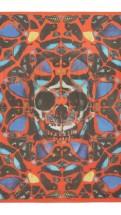 alexander mcqueen- Damien hirst red skull