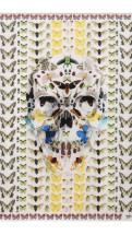 alexander mcqueen- Damien hirst skull butterfly scarf