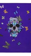 alexander mcqueen-hirst skull butterfly